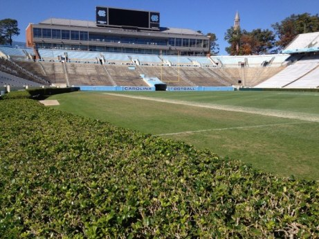 The lesser known hedges of Kenan Memorial Stadium Photo - Ryan Kantor