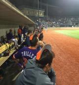 Clemson at Pittsburgh Baseball SeriesRecap